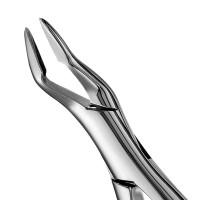 Davier Parmly Alveolar 32A prémolaires supérieures