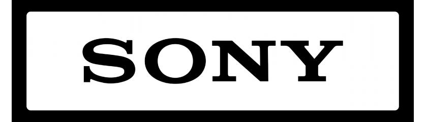FE - SONY
